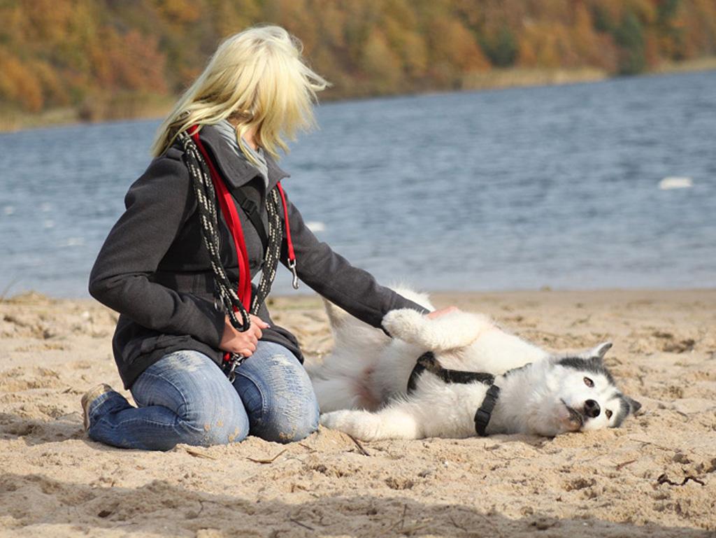 Frau spielt mit ihrem Hund am Strand